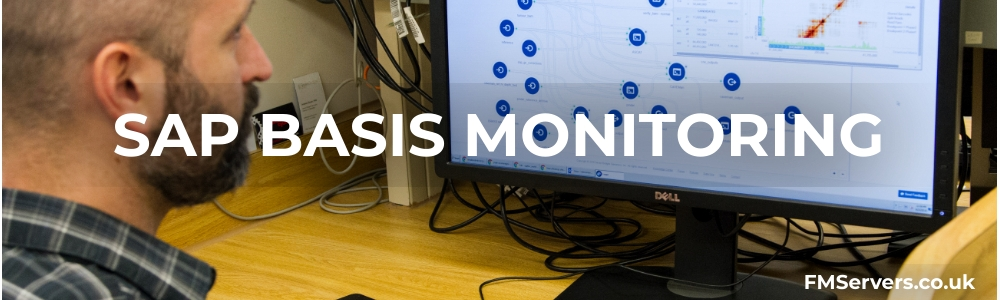 sap basis monitoring: fmservers.co.uk. Images shows an IT technician using a cloud based sap monitoring system on a PC.